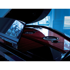 Цифровые рояли Yamaha Avant Grand N3