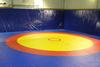 Ковер борцовский трехцветный 12х12м, наполнитель матов ППЭ+НПЭ 140 кг/м3, толщина 5см