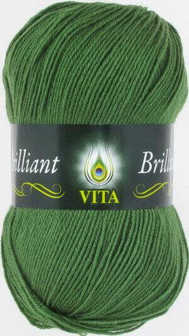 Пряжа Brilliant Vita 5111 Зеленый фото