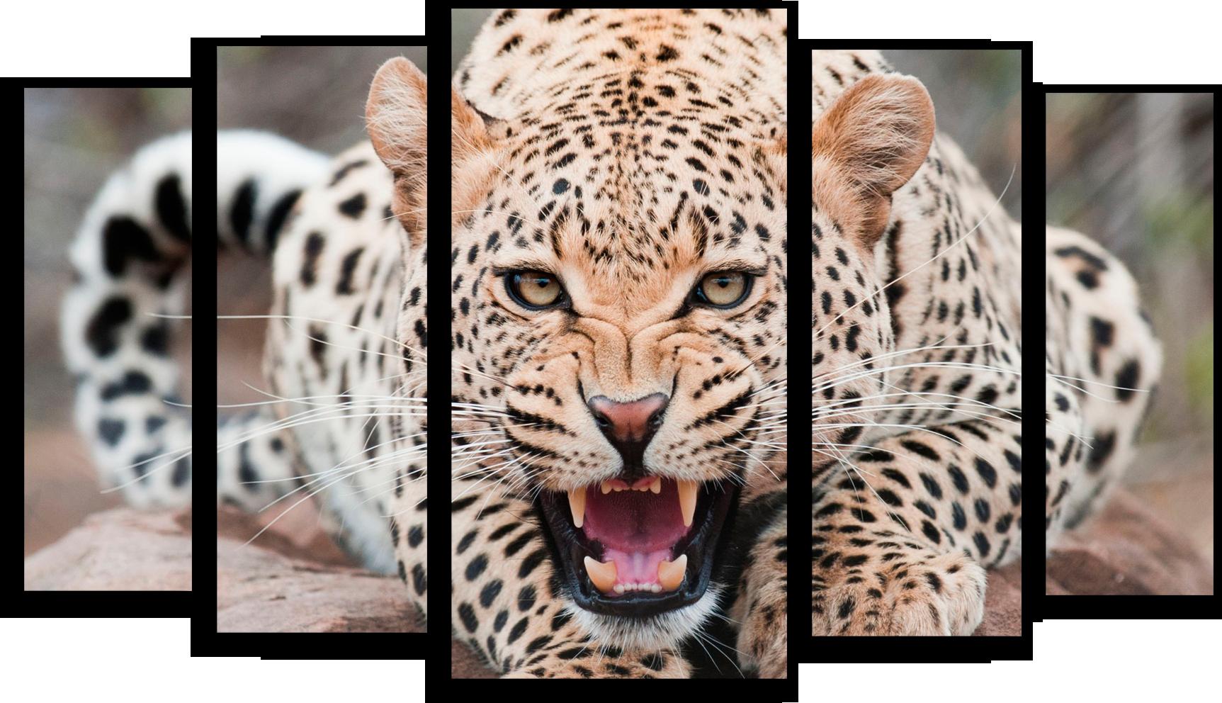 """Животные Модульная картина """"Леопард"""" М16.png"""
