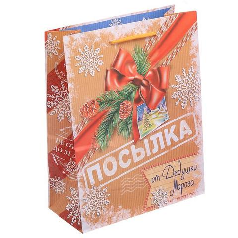 Пакет «Посылка от Дедушки Мороза», 18×23×8 см