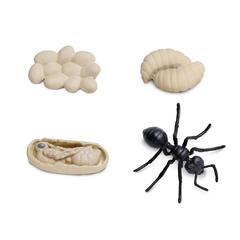 Набор фигурок Жизненный цикл муравья, Safari Ltd, состав развивающего пособия