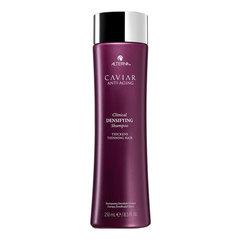 Alterna Caviar Clinical Daily Detoxifying Shampoo - Ежедневный лечебный шампунь для стимуляции роста волос с черной икрой и экстрактом красного клевера