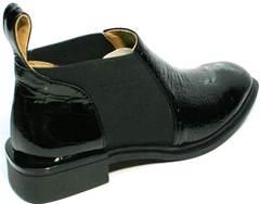 Женские туфли полуботинки челси Ari Andano 721-2 Black Snake.