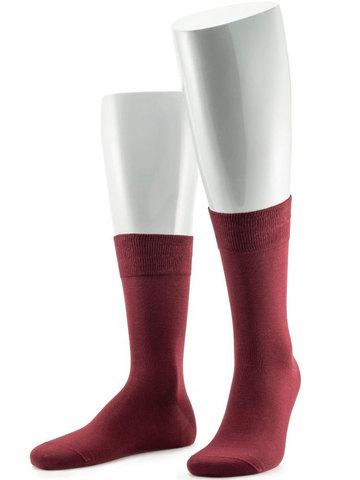 Мужские носки 17SC6 Cotton Mercerized Sergio di Calze