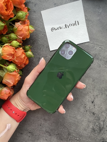 Чехол iPhone 11 Glass Silicone Case Logo /green/