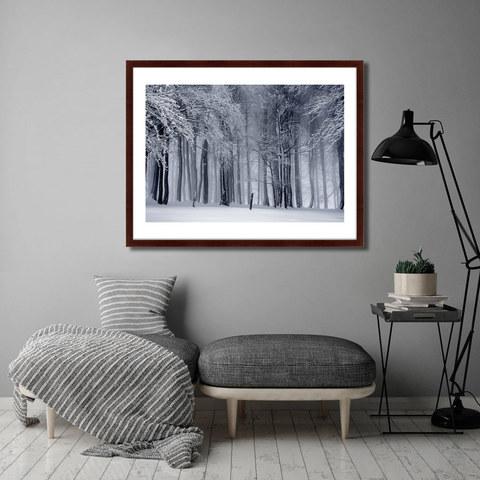 Митч Ленсинк - Elegant Bare Tree in Colorado