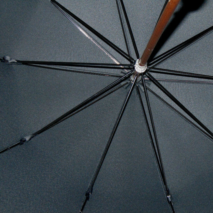Зонт-трость Guy de Jean Senior мужской