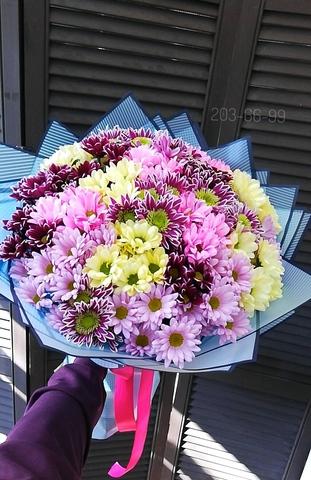 25 кустовых хризантем с оформлением #1638