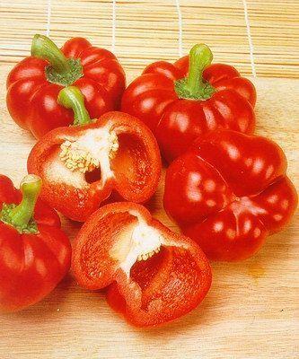 Перец Притавит F1 семена перца сладкого (Seminis / Семинис) ПРИТАВИТ_F1__Privavit__семена_овощей_оптом.jpg