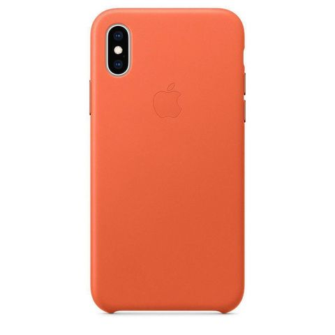 Чехол iPhone X/XS Leather Case /sunset/