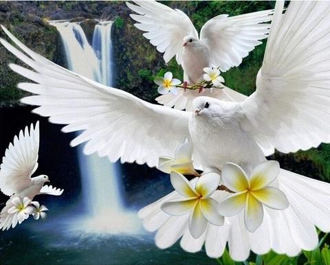 Алмазная Мозаика 30x40 Белые голуби летят над водопадом (арт. B2402)