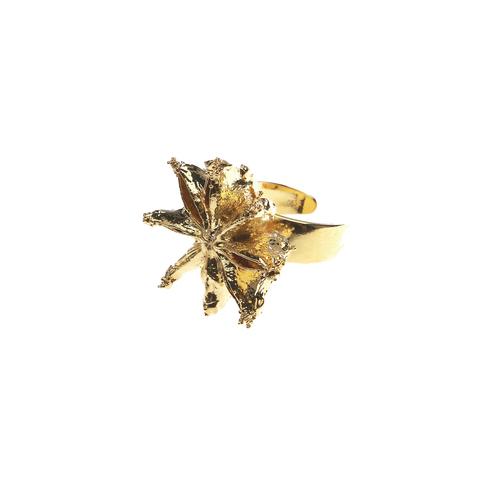 Кольцо Звездный Анис LF20R-G BR