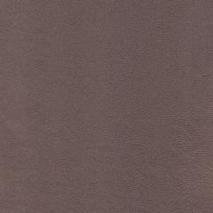 Искусственная кожа Polo perlamutr koriza (Поло перламутр корица)