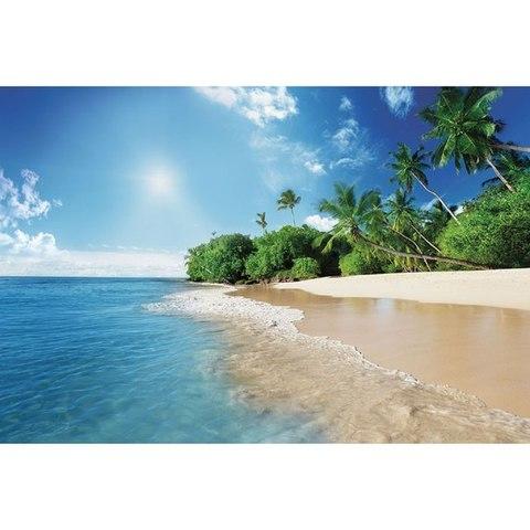 Морской берег 392x260 см