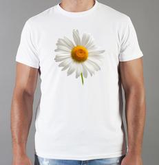 Футболка с принтом Цветы (Ромашки) белая 001