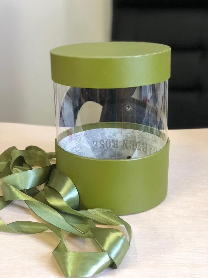 Коробка аквариум 16 см Цвет :Болотный . Розница 350 рублей .