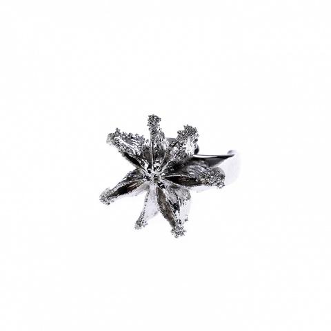 Кольцо Звездный Анис LF20R- S BW
