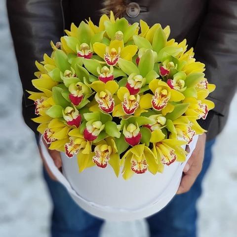 Коробка с орхидеей 3