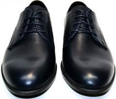 Туфли мужские синего цвета Икос 3360-4.