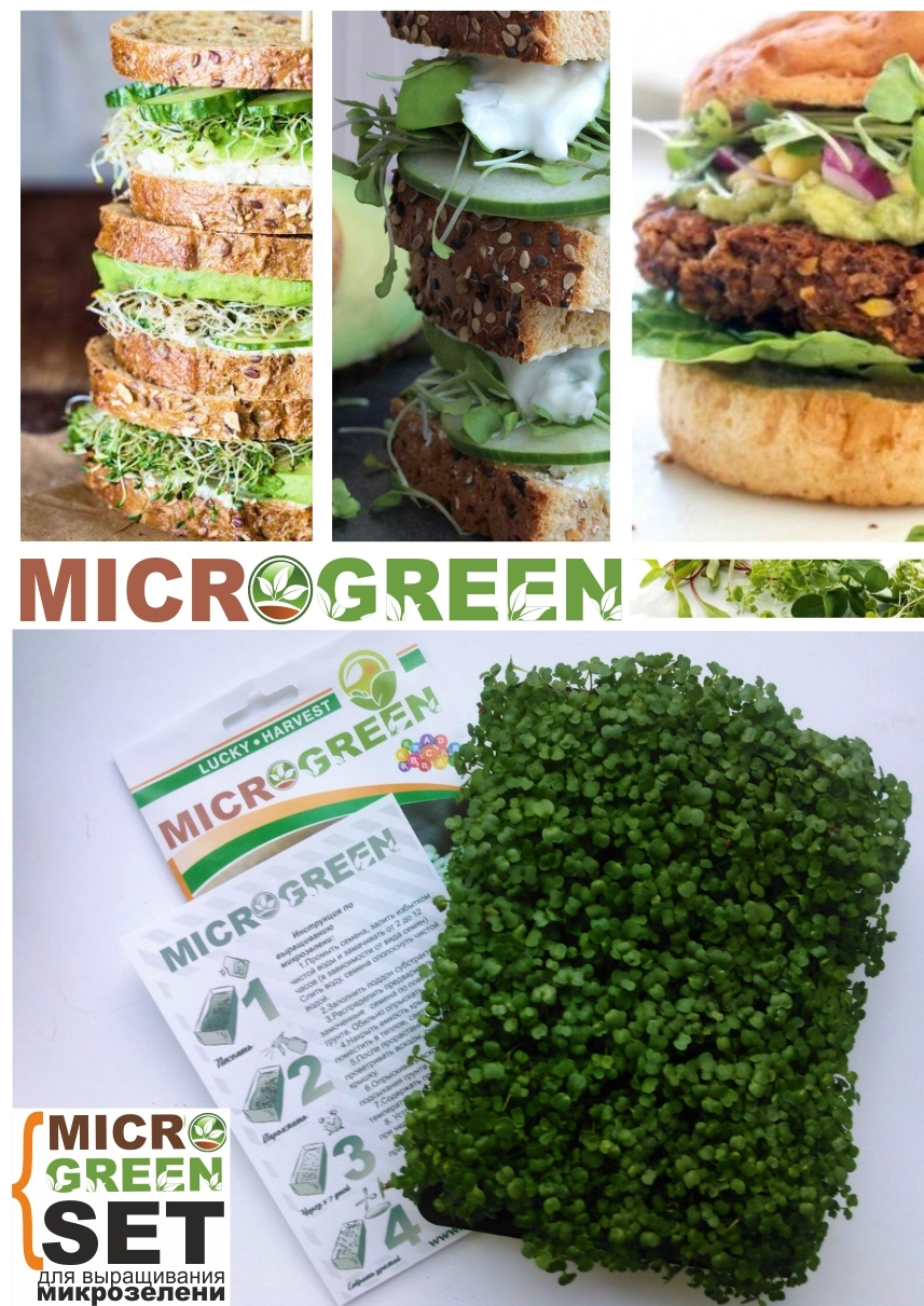 MICROGREEN SET