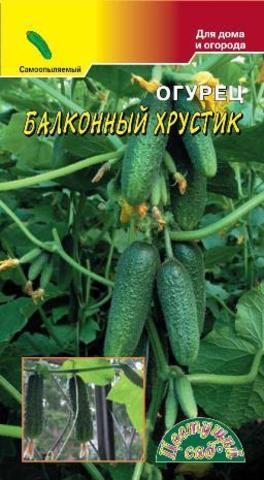 Семена Огурец Балконный Хрустик F1