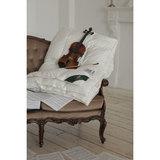 Одеяло всесезонное 200х220 Herbst, артикул DH-14208, производитель - Anna Flaum
