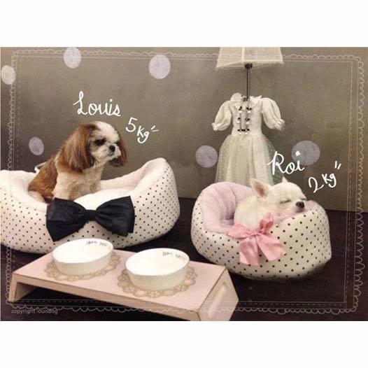 лежанки для маленьких собак