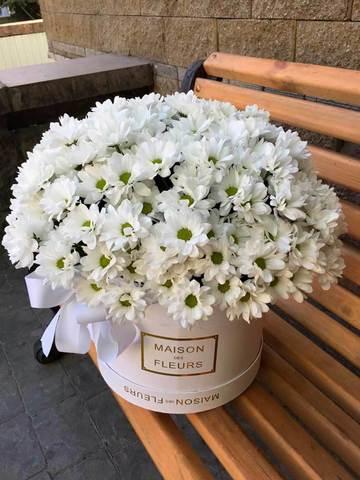 Большая коробка из ромашковых хризантем