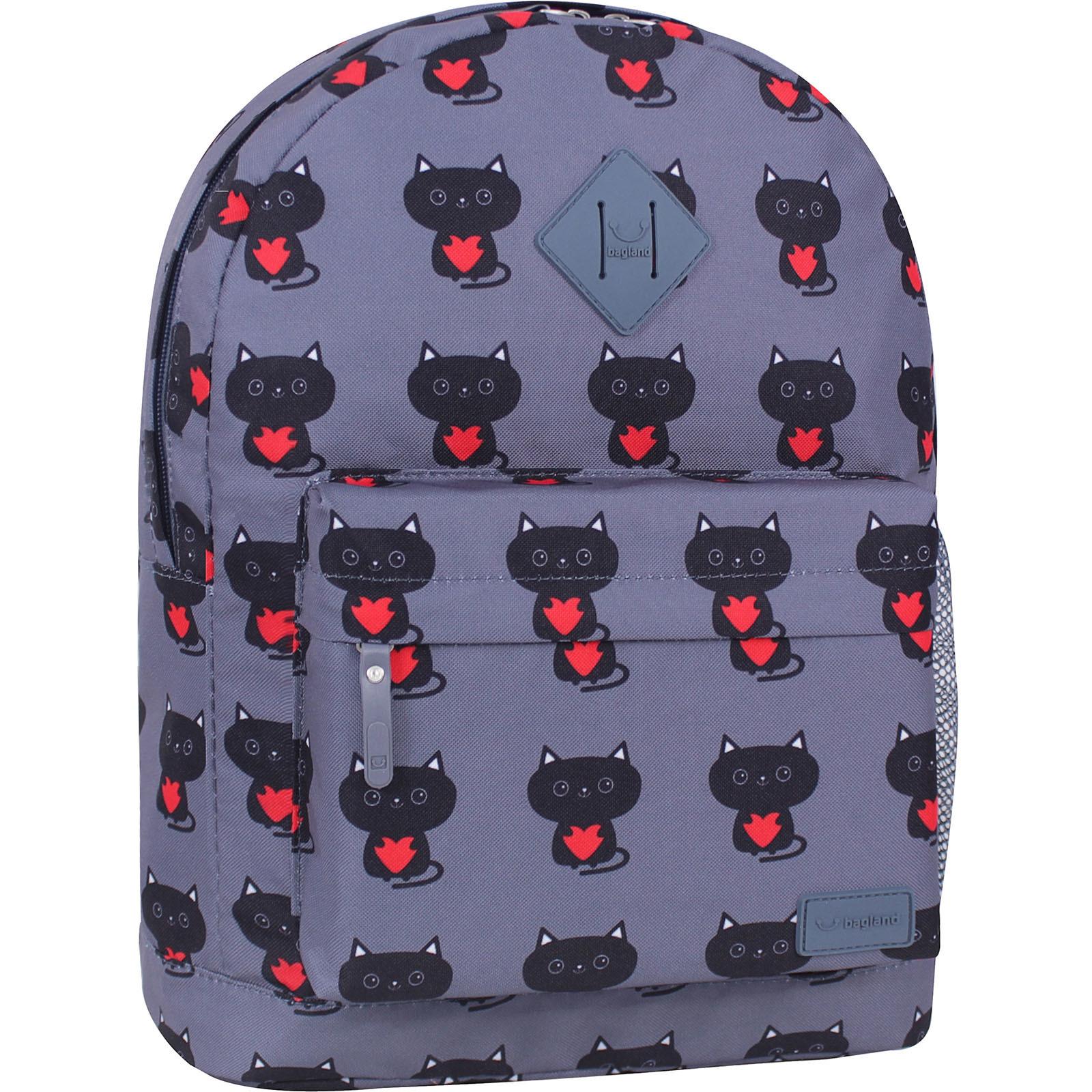 Молодежные рюкзаки Рюкзак Bagland Молодежный 17 л. сублімація 750 (00533664) IMG_7583_суб.750_.JPG