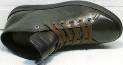 Кожаные мужские ботинки кроссовки весна осень Ikoc 1770-5 B-Brown.