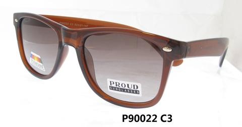 P90022 C3