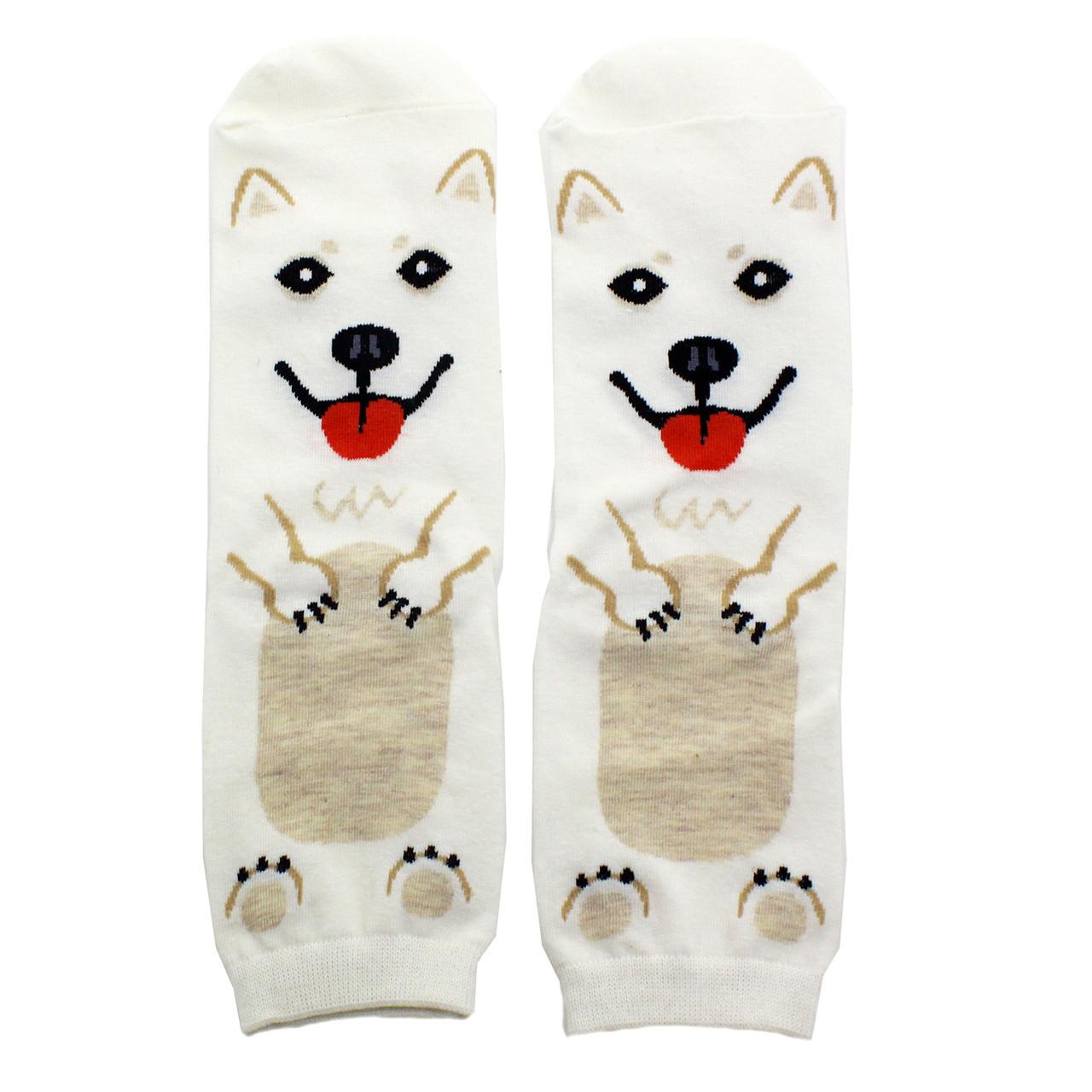 Носки Пёсик Белый