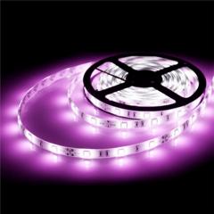 Светодиодная лента 2835-9,6W, 120LED/м, 12V, IP20 фиолетовый 12В