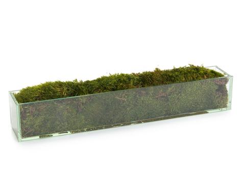 Moss Mound