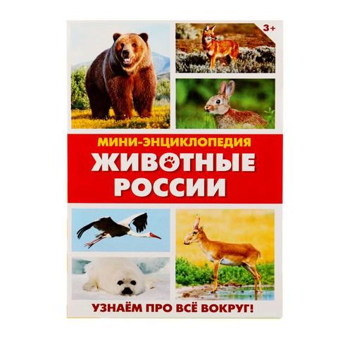 071-0110 Мини-энциклопедия «Животные России», 20 страниц