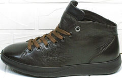 Осенние мужские кроссовки сникерсы кожа Ikoc 1770-5 B-Brown.