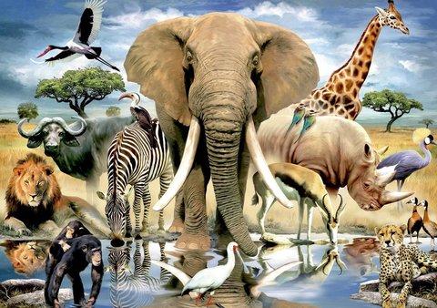 Алмазная Мозаика 20x30 Насыщенный мир животных