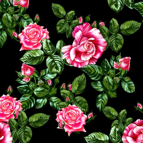 розы_06_ночной сад