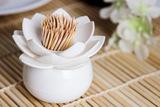 Подставка для зубочисток Lotus белый Qualy QL10156-WH-WH | Купить в Москве, СПб и с доставкой по всей России | Интернет магазин www.Kitchen-Devices.ru