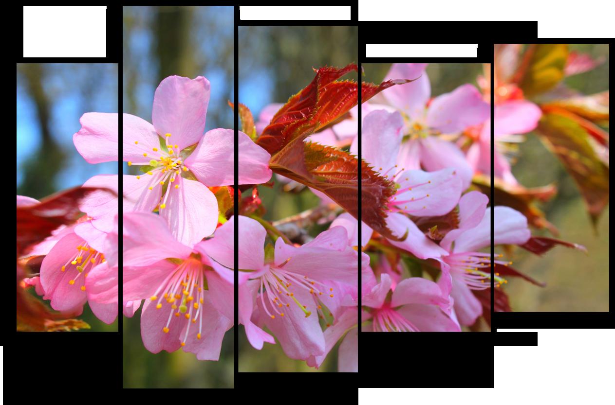 """Цветы Модульная картина """"Небесное отражение"""" М918.png"""