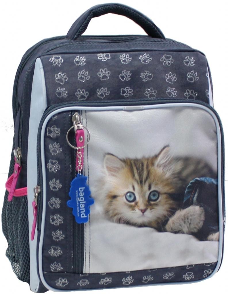 Школьные рюкзаки Рюкзак школьный Bagland Школьник 8 л. Серый (котенок светлый) (00112702) 1fd37ce80d495bebcb35e0054d7384fe.JPG
