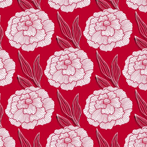 Красно-белое цветение