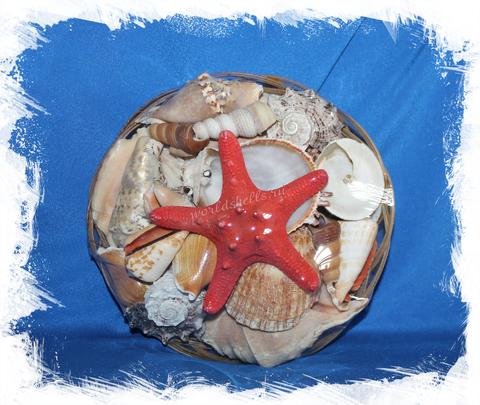Морское Ассорти 18 см