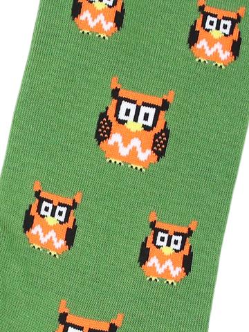 Носки Owl