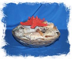 Морской декор набор ракушек