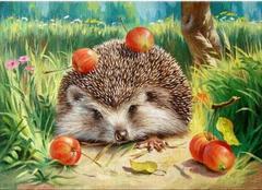 Картина раскраска по номерам 30x40 Ежик с яблоками