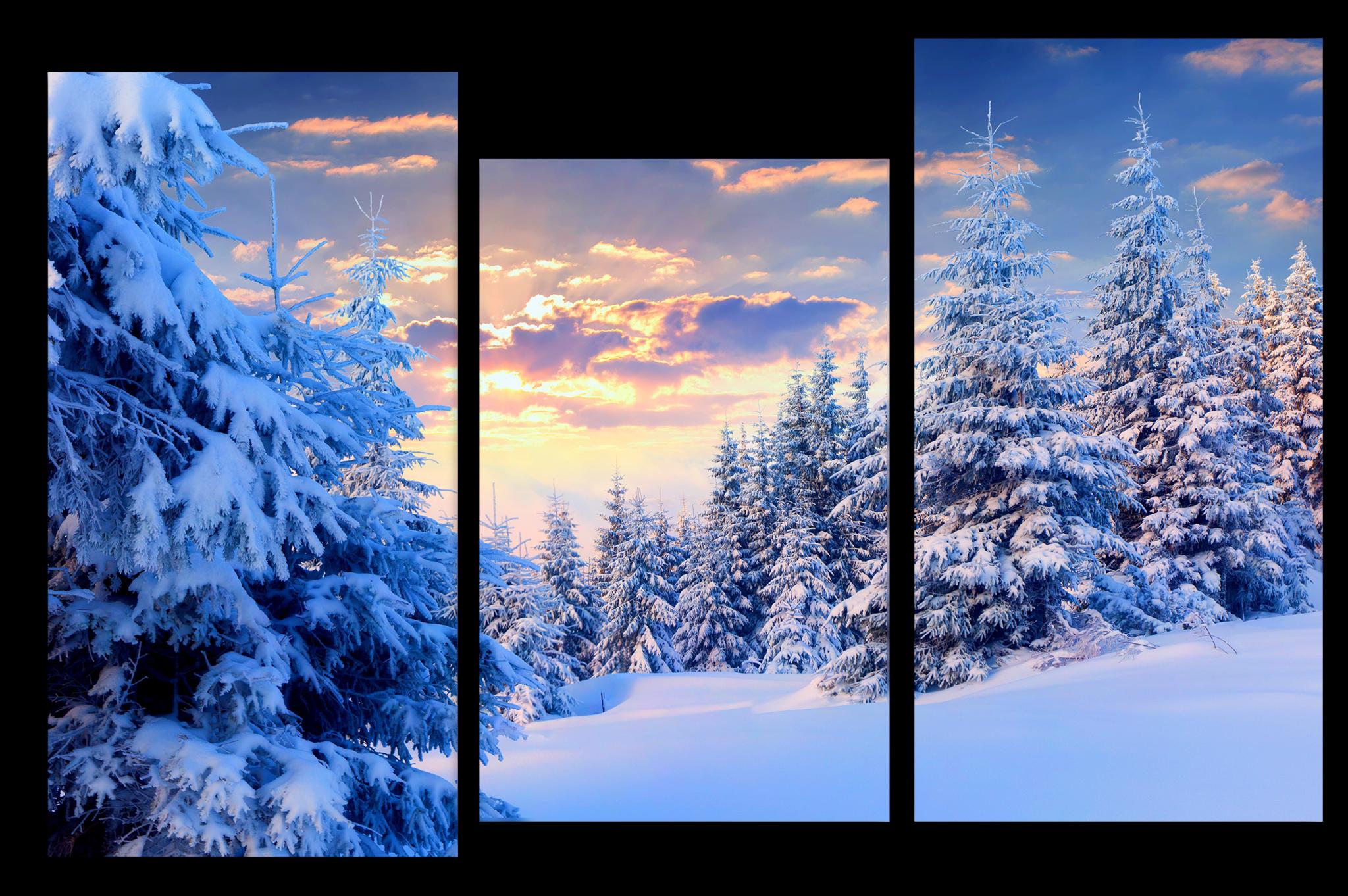 """Модульные картины Модульная картина """"Красивая зима"""" м1003.png"""