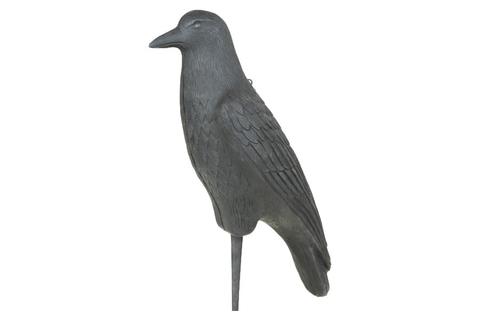 Муляж вороны Flambeau Hard Body Crow 5900CR