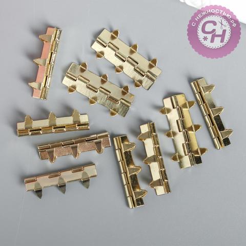Петли для шкатулок на 6-и иголках, металлические, 0,8*3 см, 1 шт.